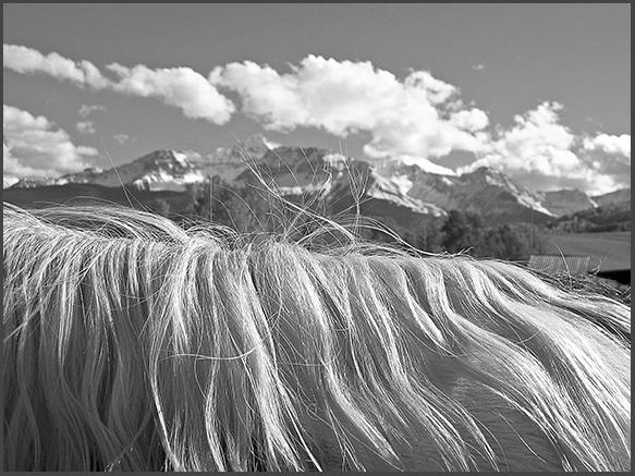 momentary landscape